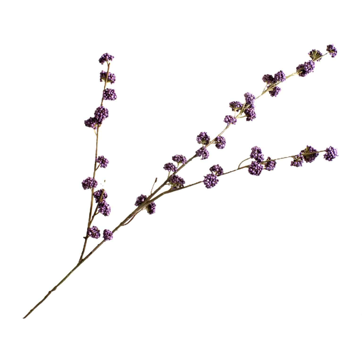 Buy delightful faux varia callicarpa purple spray stem. Known as the beauty berry