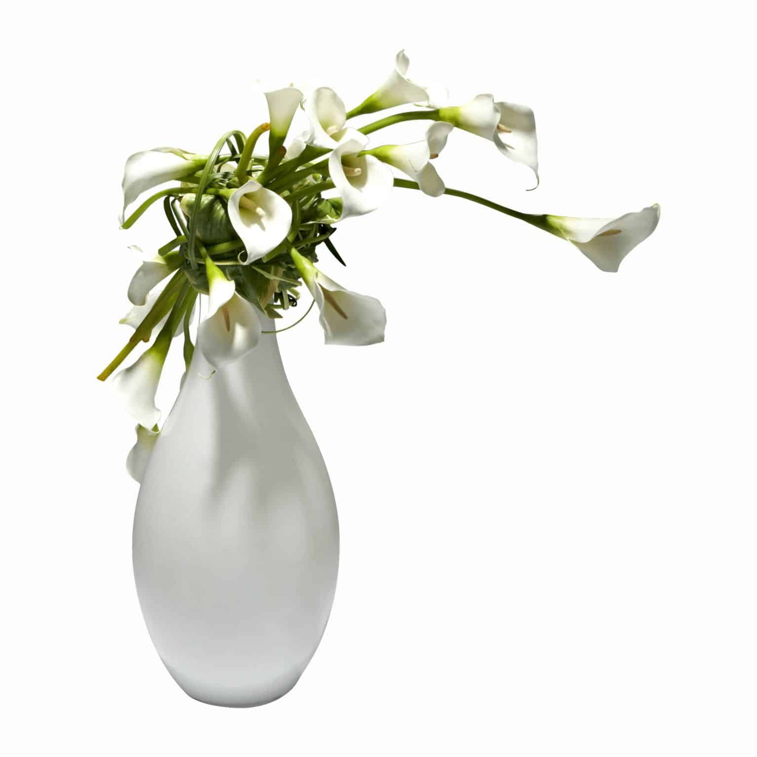Shop for our modern arrangement of pure white silk calla lily flowers in a white glass vase. Using our immaculate faux calla lilies for this stylish design.