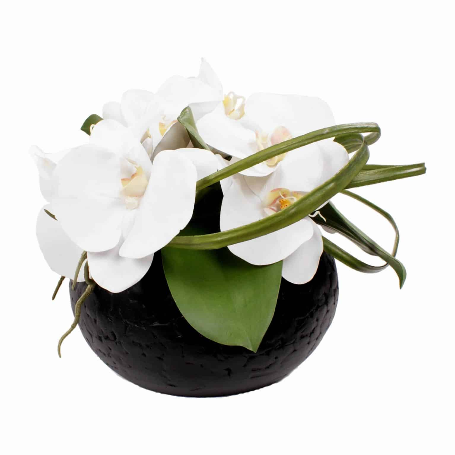 Buy our timeless combination of pure white phalaenopsis orchid silk flower heads with lifelike pollen detail. Arranged perfectly in a black pot.