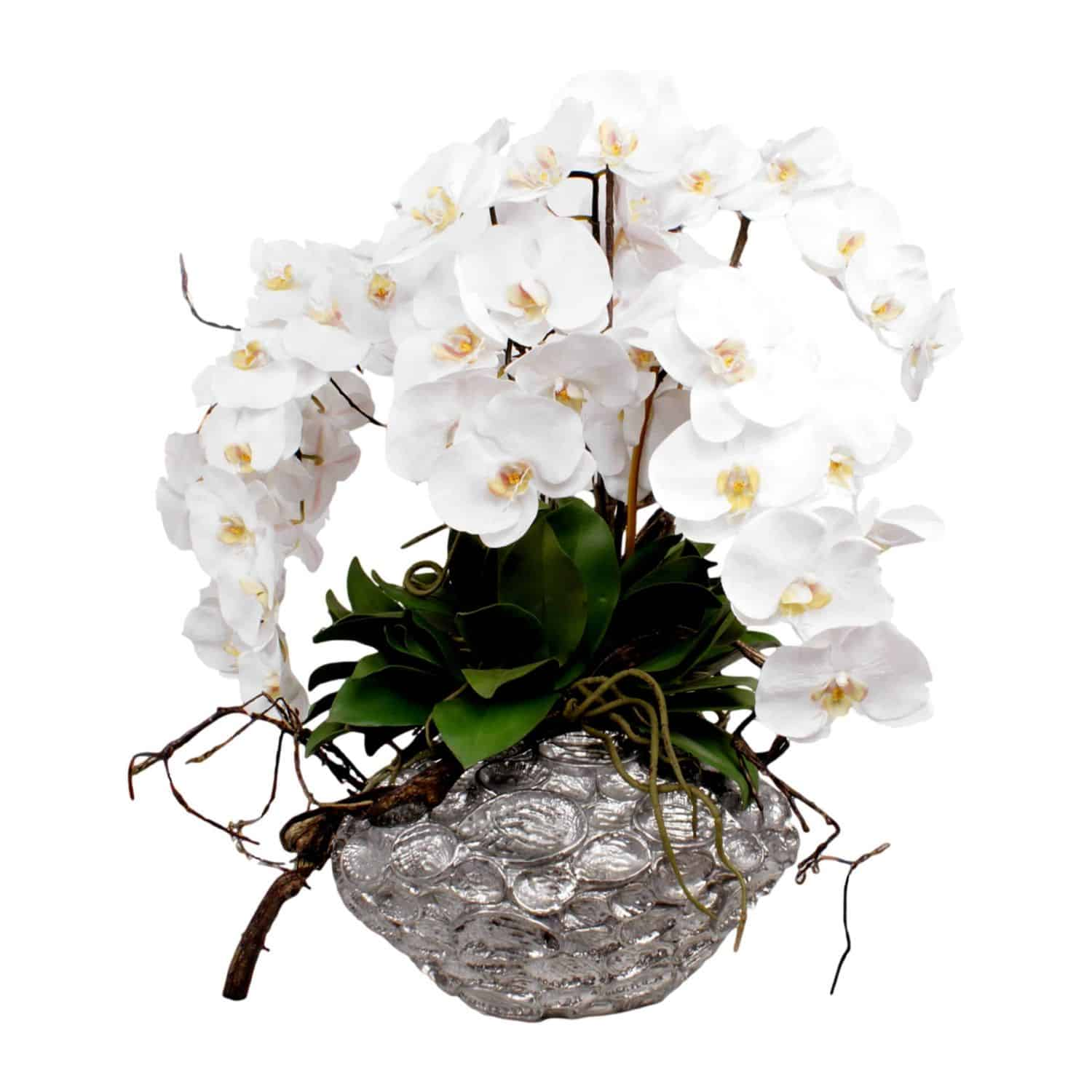 Shop for our large white head phalaenopsis orchid silk flower. Each gorgeous head has a natural look with lifelike detail. Arranged with artificial orchid leaves.