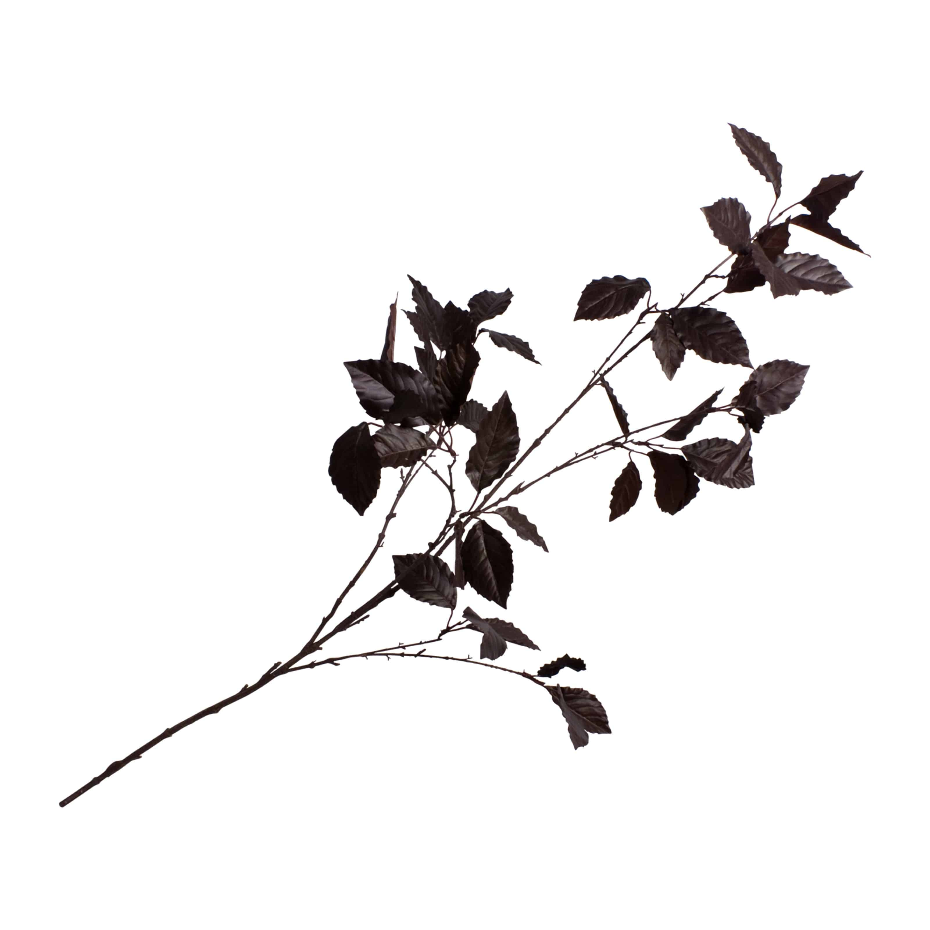 Buy online rich chocolate brown beech tree faux branch is perfect for adding shimmering tones. Exceptional foliage for creating your own arrangements.