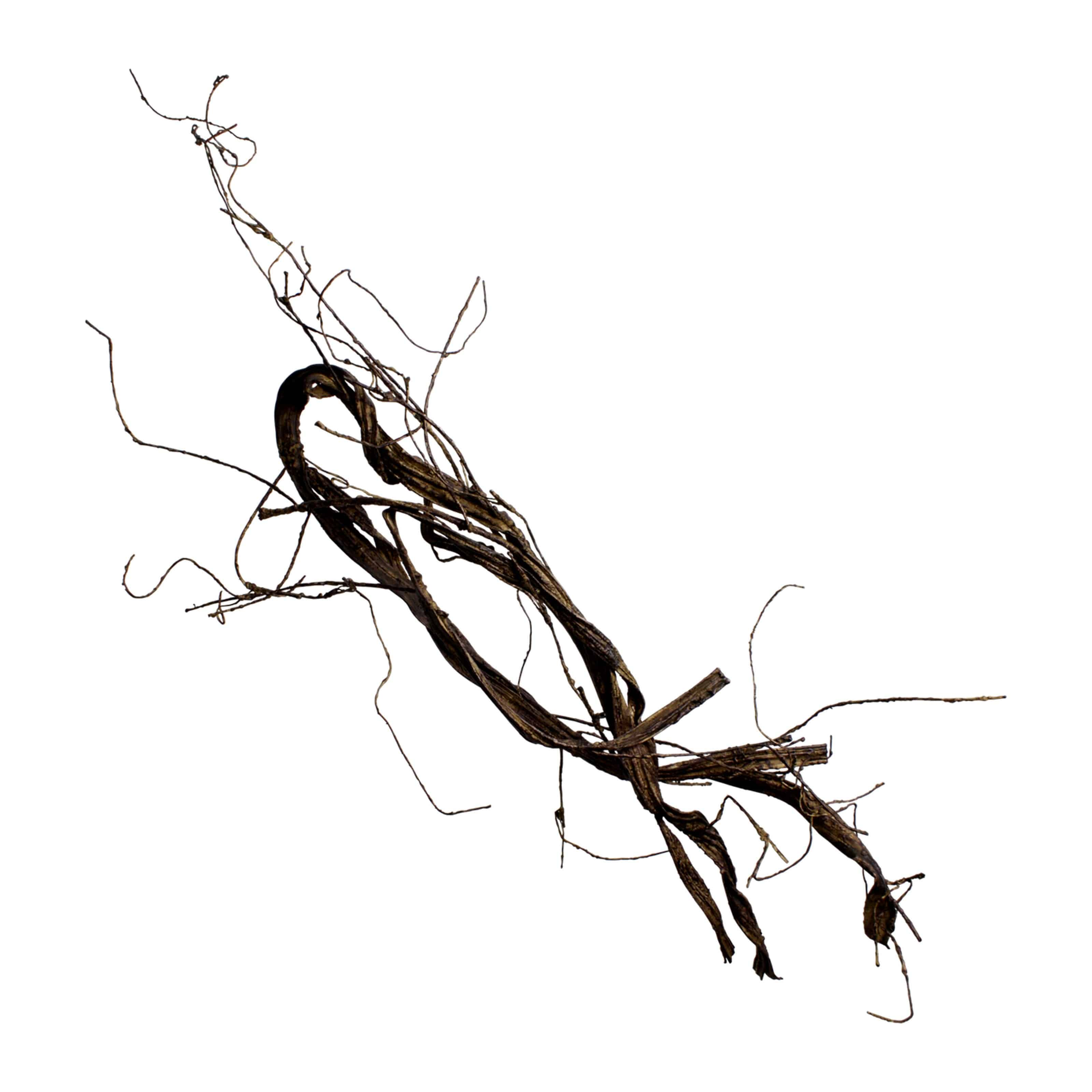 Buy our artificial flax twig to add rustic earthy beauty to your arrangement designs. Easy shape into any style