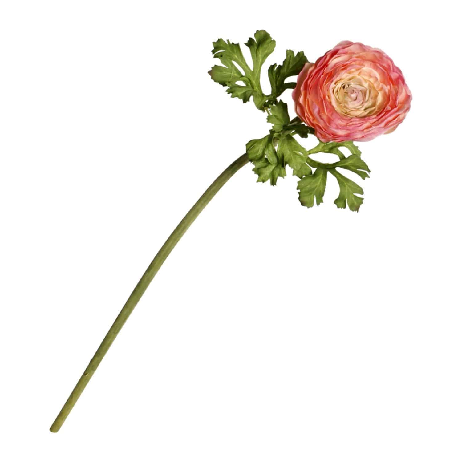 Fully bloomed ranunculus silk flower is wonderfully designed to show this flower at its finest. Pink to peach colour is superbly lifelike with natural tones.