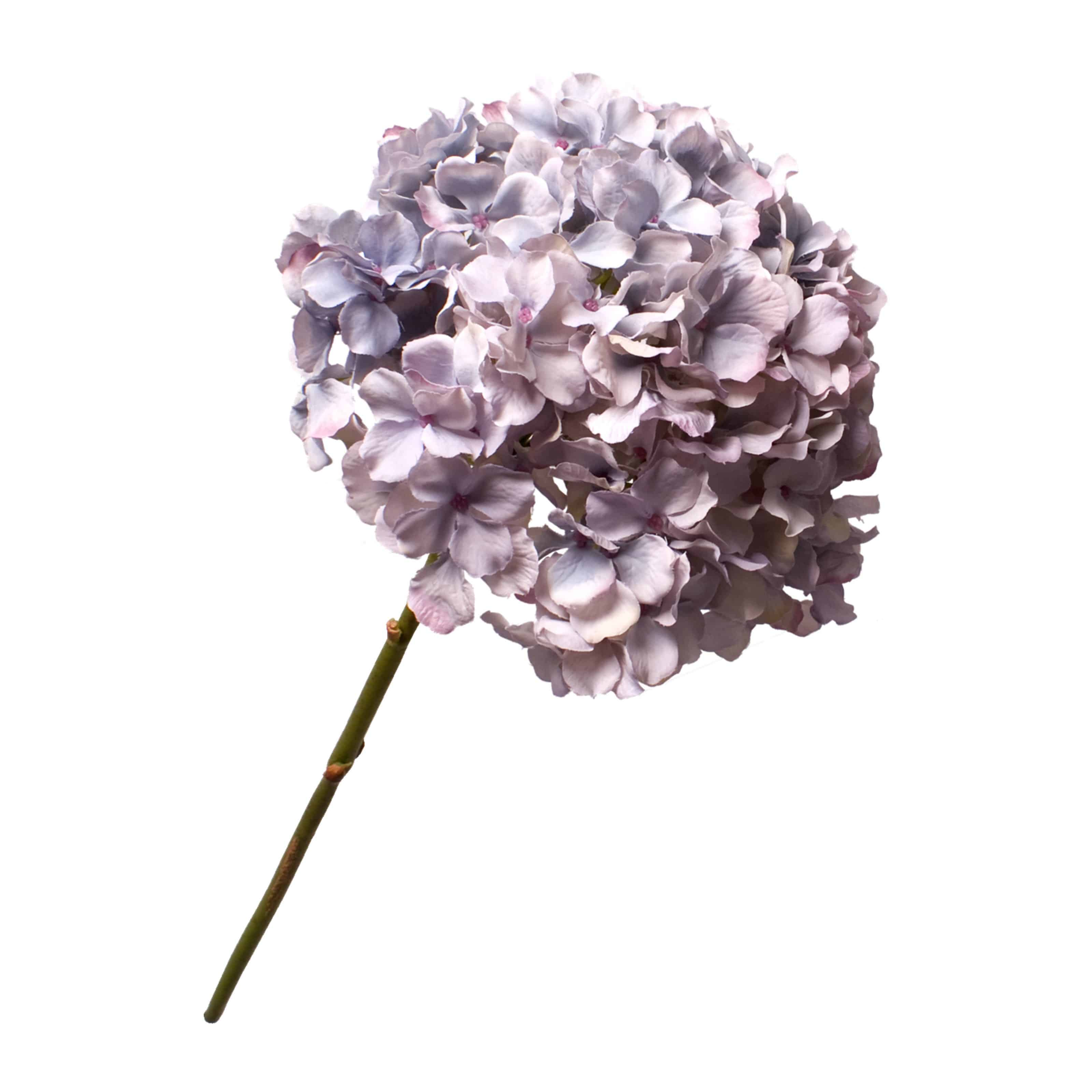 Buy silk hydrangea in authentic lavender blue. A complete arrangement in a single stem & wonderful addition to any arrangement.