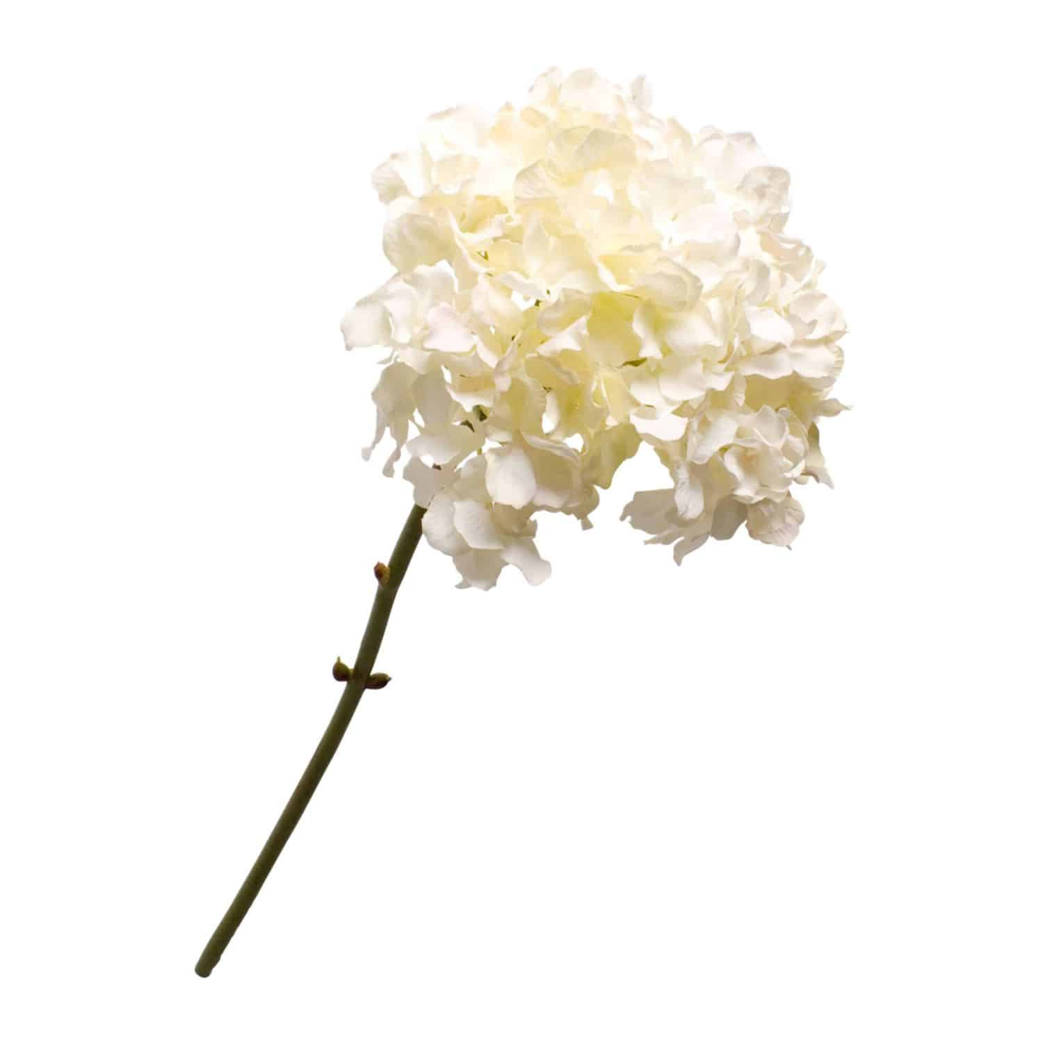 Buy faux hydrangea stem in a soft cream. Stunning arrangement in a single stem & wonderful addition to any floral display.