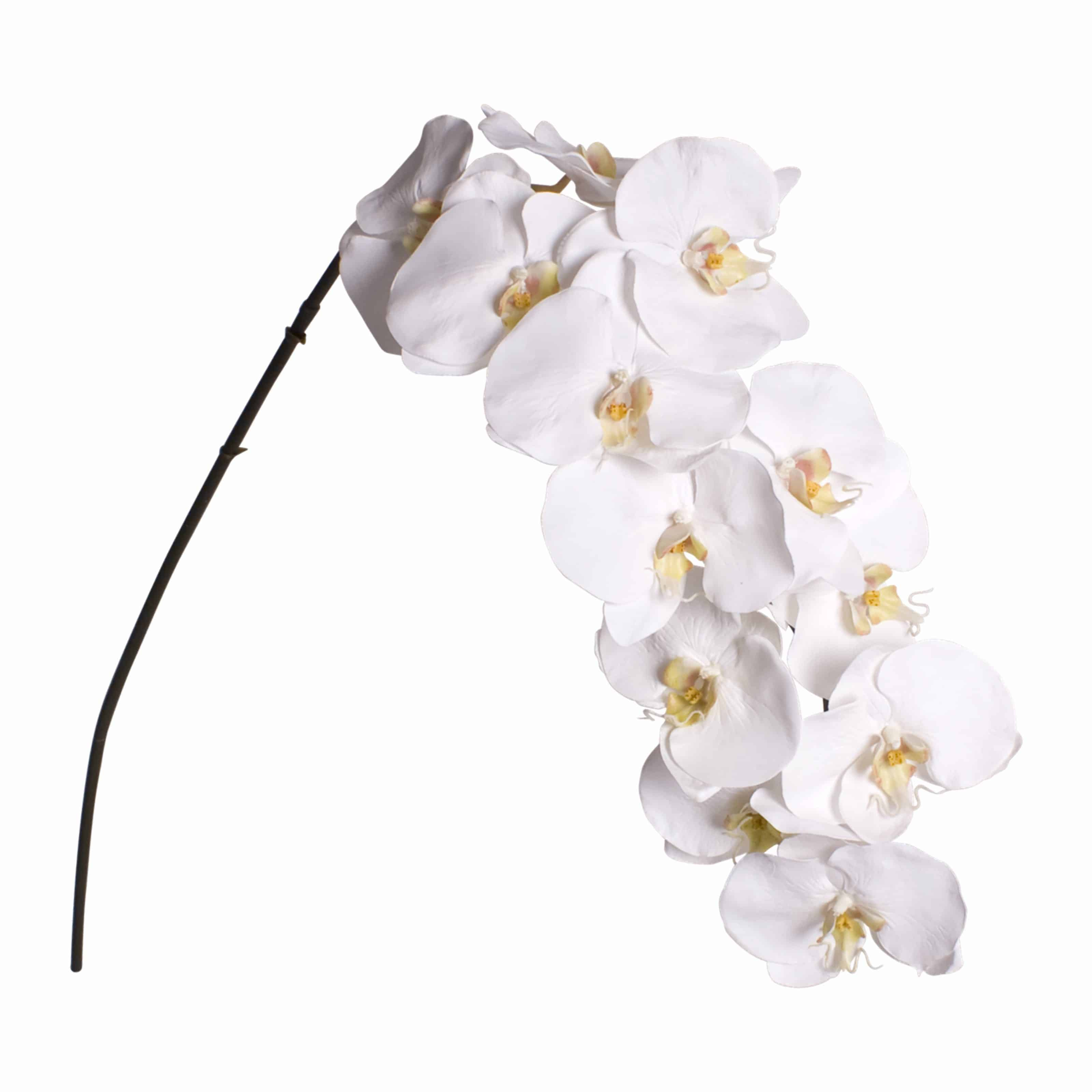 Buy classic white phalaenopsis orchid faux flower for your arrangements. Incredibly detailed lifelike pollen