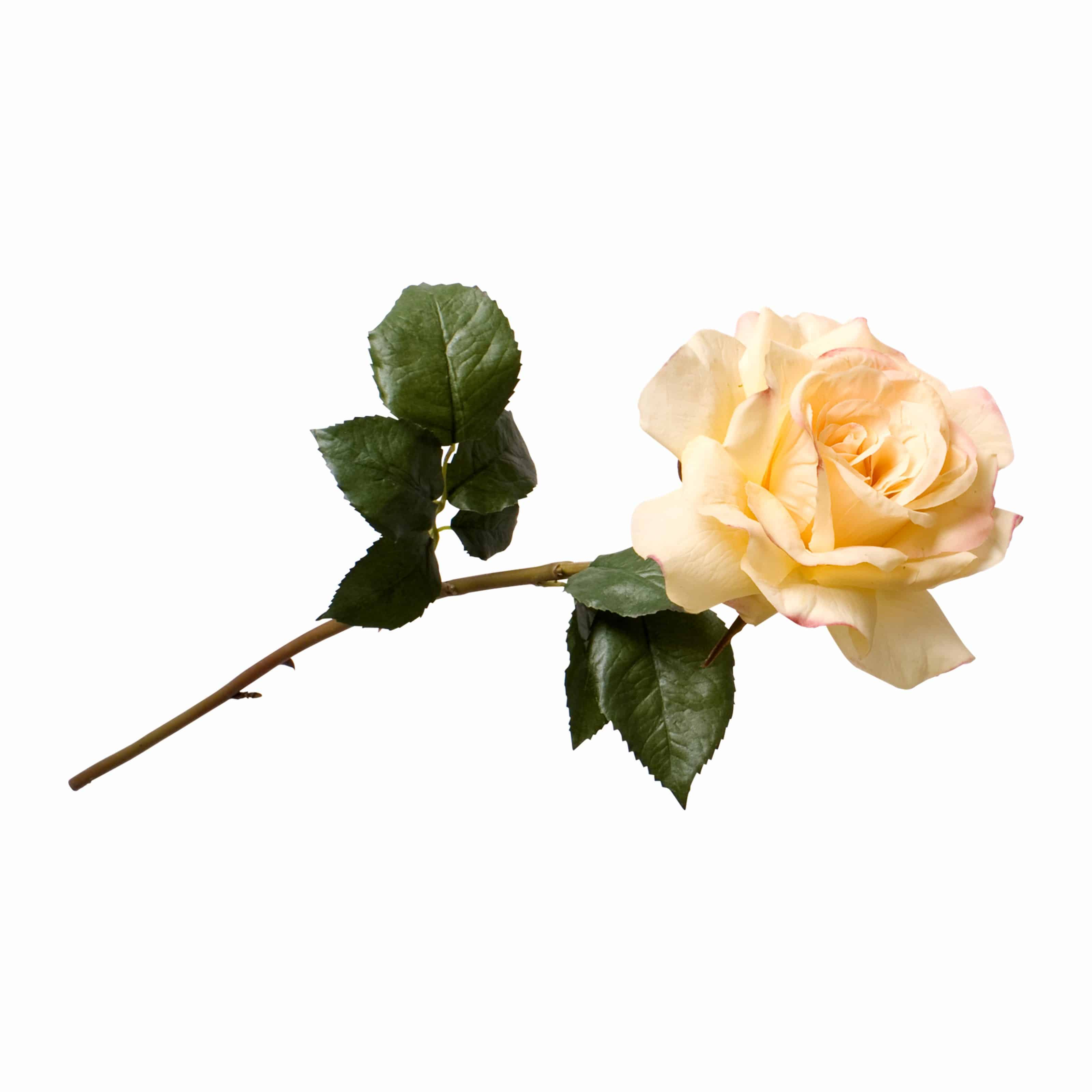 Buy the best silk flowers