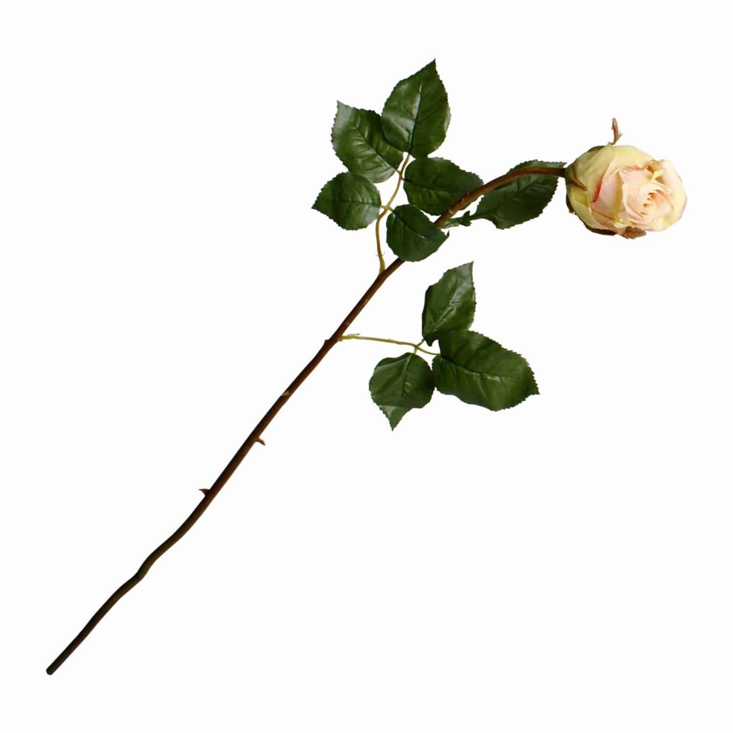 Buy the best silk roses. Our dusty pink Ecuador rose flower is truly natural looking. Each stem has a partially bloomed bud with tight petals and a long stem.