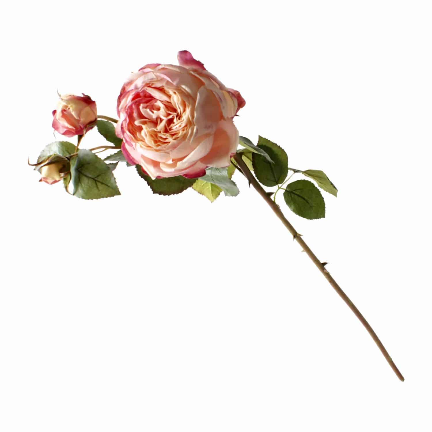 A British favourite faux rose and masterpiece of design. Includes budding heads