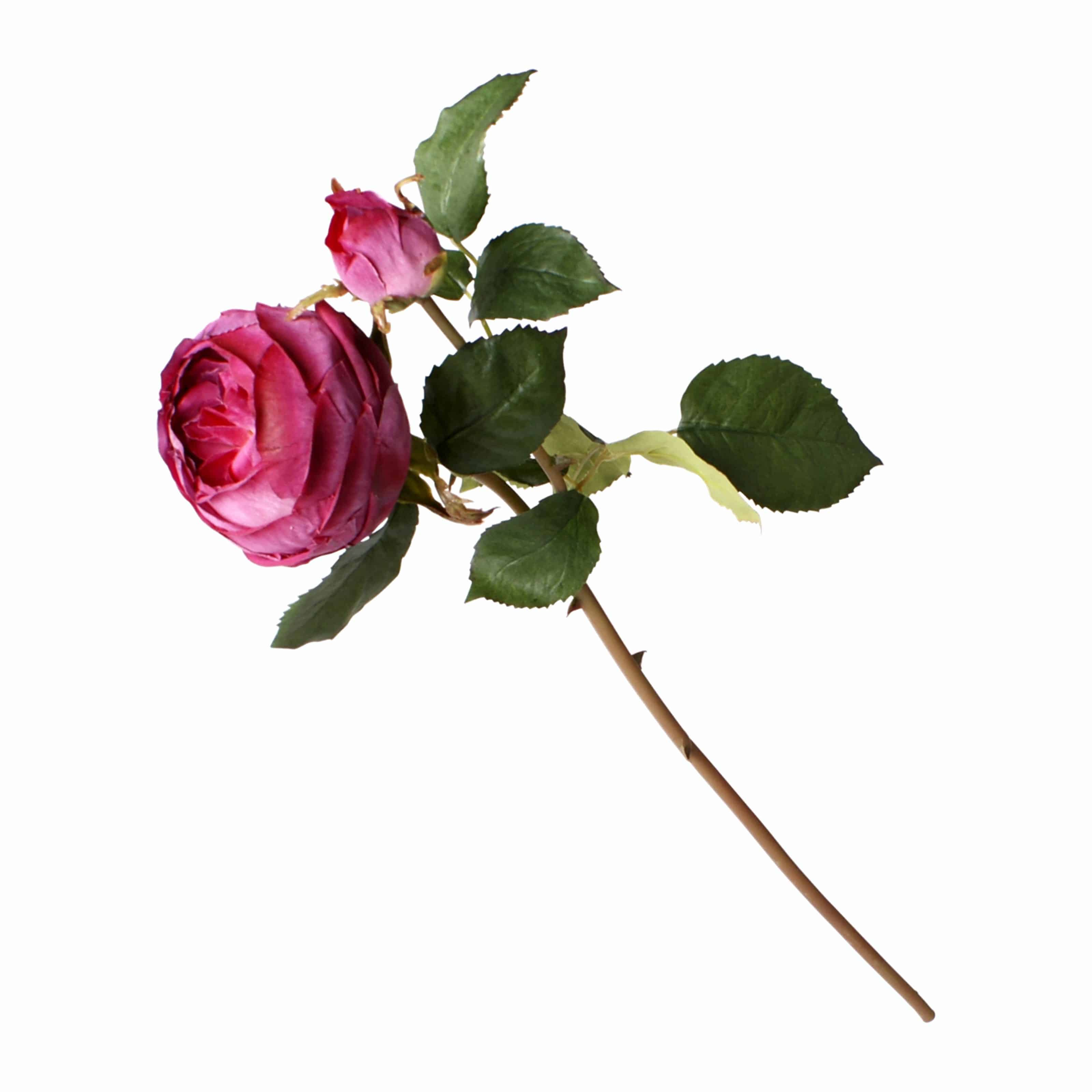 Buy our best fully bloomed rose silk flowers. Rich wine red colour of densely layered petals including a budding flower. Perfect for tall arrangements.