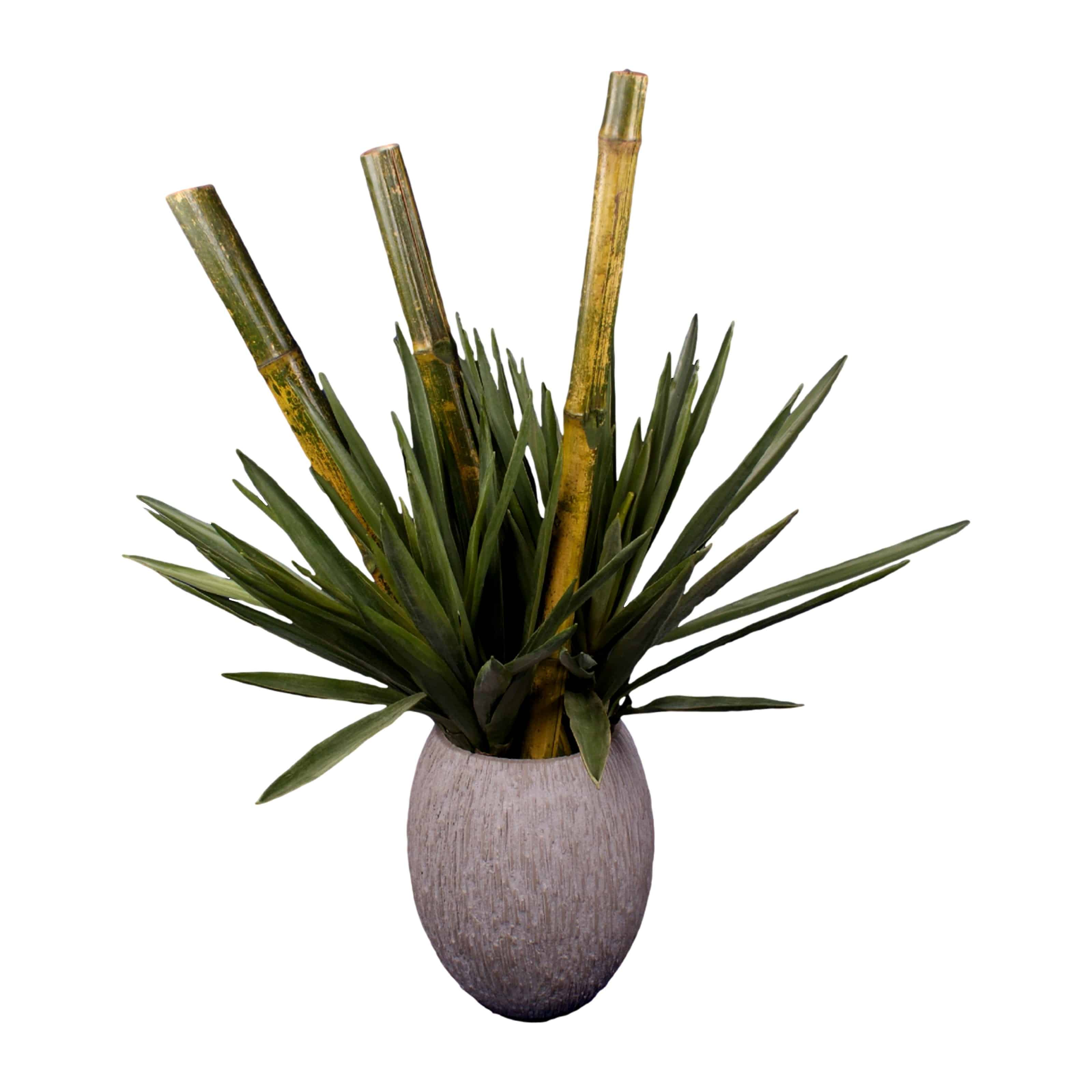 Shop for our artificial yucca plant. Truly realistic in colours and textures with bamboo this arrangement captures dramatic nature. Its also upkeep free.
